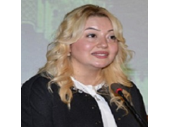Assoc. Dr. Elif Haykır Hobikoğlu, Director, Center for Women Research, Istanbul University